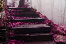 Caminhos / Há lindos caminhos.  É preciso encontrá-los para desfrutar. / by Alana Pontes