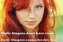 gingers/redheads / by Tonya Morse-Weaver