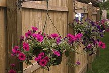 Backyard Ideas / by Gena Mead Calta