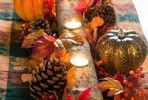 Thanksgiving / by Jamie Gunter