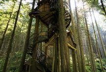 Tree Houses / by Kristen Frazier