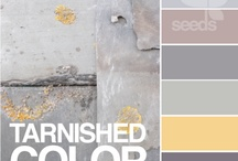 Color Combinations / by Cindy Johnson