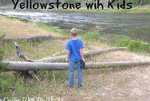 Yellowstone vacation.  / by Jason Paul