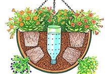 Gardening ideas / by Crystal Lybrink