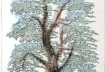 genealogy / by Christina Brown