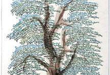 Genealogy / by Marjorie DuPree Marshall