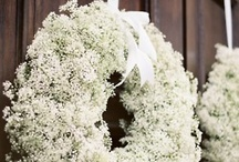 Wreaths  / by Susan Wodicka