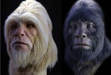 The Paranormal - Bigfoot/Sasquatch/Yeti / by Will Hoover
