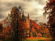 fall-i love fall! / by Susan Matz Larsen