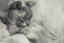 Cats In Art / by Kim Peters Brill