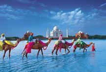 India / by Chalermchat Tasukon
