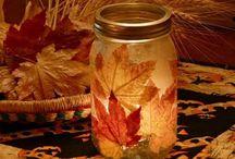 Fall / by Leisha Senter