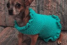 things i want to make for my furry friends / by Jennifer Nogy