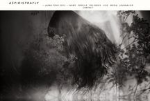 Band/Label Web Design / Awesome design for band or record label web pages. / by Daniel Tuttle