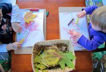 Kindergarten Provocations  / by Jeninfer Ford