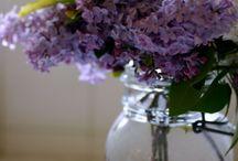 Flores en vidrios / by Angeles Roy
