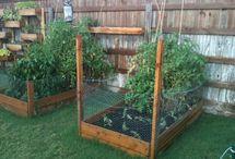 outdoor spaces & garden ideas / by Laura Krystowski Kiesel