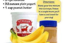 For my pups / Clean eating for pups / by Mary Samples