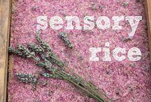 Preschool Sensory / Preschool, sensory, preK / by Jaimie Lynn