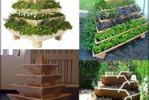 Herb garden ideas / by Galia Azadian
