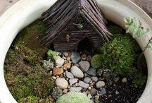 Fairy Garden Ideas / by Emily