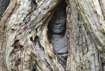 Zen practice, attitude, perception ... / by Pierre Paperon