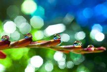 Photography / by Monira Alam