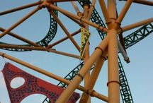 Awesome roller coaster♥ / by ♥Clary♥