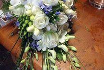 Dream Wedding / by Michelle Brombacher