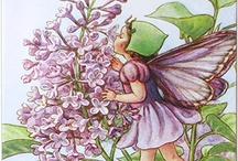 Fairies / by Elizabeth Golob