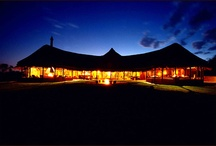 Honeymoon in Namibia / by Namibia Tourism Board
