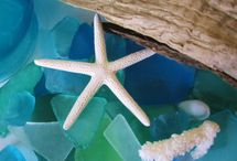sea glass / by C