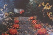 Autumn Air / by Lauren Lubischer