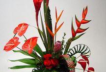 Floral designs / by Magalie Leger