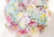Wedding Flowers / by Kristen
