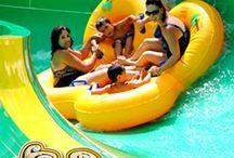 Vacation Spots / by Holy Family University