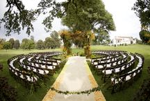 Dream Wedding Ideas / by Talia Varone