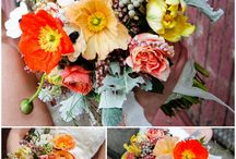 Flora & Fauna  / by Mallory Hill