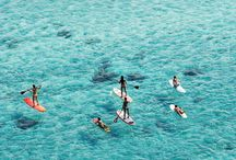 SUP / Stand Up Paddle Boarding! / by Jodi Steinhoff