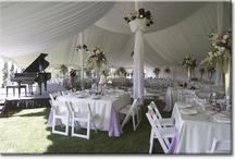Tent Wedding Ideas / by Sam Elliott