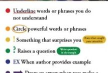 Study tips / by Kristin Grant