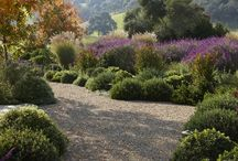 Napa house / My perfect Napa house, environment  - Howard Backen, Barbara Colvin, wine Country inspired etc  / by kkbelle NZ