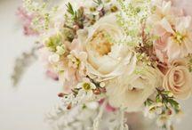 Flores, flowers j'dore / by Aimee Monihan