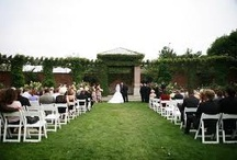 Ideas for Sharon and Ryans Wedding!  / by Melinda Griffith