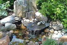 Water Garden Ideas / by Lynn Webster