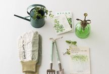 Garden:Tools and Seeds  / by Clara Bellino