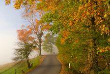 Fall 2014 / by Sylvia J. Heard