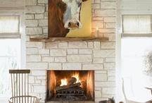 Devine Bovine / Cows / by Leslie Smith