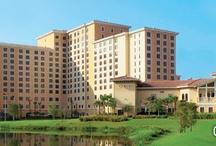 Let's Golf! Golfing at Shingle Creek Golf Club / by Rosen Hotels & Resorts Orlando, Florida