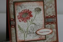 Stampin up ideas / by Sue Stratton